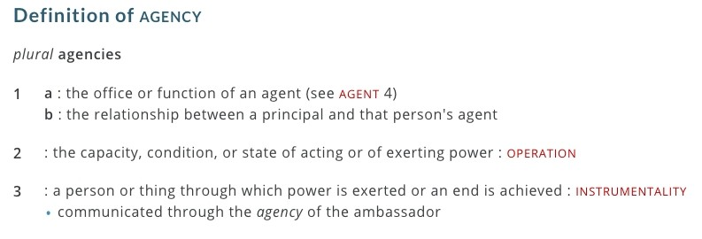 agency definition merriam webster